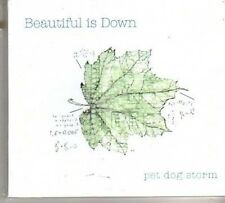 (CK31) Pet Dog Storm, Beautiful Is Down - 2011 DJ CD