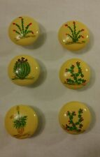 Hand-painted Wood Drawer Pulls/Knobs set of 6 - Cactus Theme