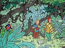 Affiche Hergé Tintin dans la jungle Le Temple du Soleil 50x70 cm