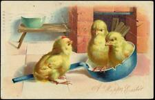 Vintage Tuck Easter PPC - Fluffy Chicks Sitting In Kitchen Ladle - Happy Easter