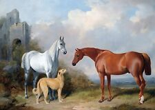 "William Barraud, Deerhound, Grey and, Chestnut Hunter, Horses, 16""x11"" Art Print"