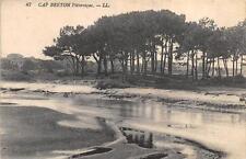 CPA 40 CAP BRETON PITTORESQUES
