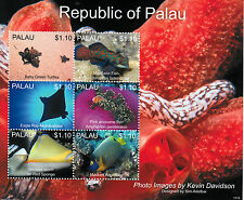 Palau 2013 MNH Marine Life IV 6v M/S Turtles Mandarin Fish Ray Anemone Sponge