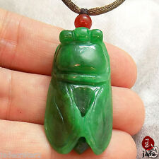 Chinese Green Cicada Jade pendant necklace a symbol of rebirth US SELLER