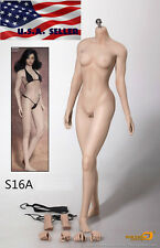 Phicen 1/6 S16A Super-Flexible Seamless M Bust Female Body Steel Skeleton PALE