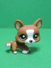 #2150 chien dog brown white Corgi with green eyes LPS Littlest Pet Shop Figure