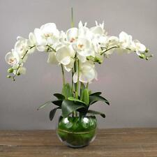 12 Head Artificial Phalaenopsis Fake Flower Home Wedding Party Decor-White
