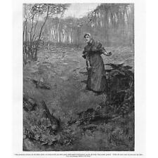 Tess du d'urbervilles la plantation où... - impression antique 1891