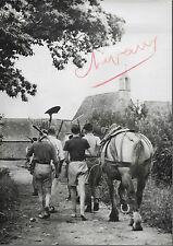 PHOTO PRESSE D.N.P. 1943 + CHEVAL de TRAIT Retour à la ferme jeunes travailleurs