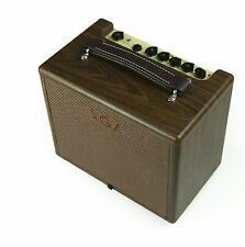 SPECIAL AUCTION - 20w 20 watt Acoustic Guitar Amplifier Amp AGA wood wooden hot