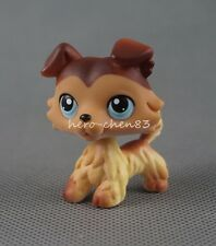 Littlest Pet Shop LPS #58 Brown Collie Dog Puppy Blue Eyes Girl Toys Gift