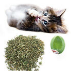 Fresh Organic Dried Catnip Nepeta cataria Leaf & Flower Herb oz Bulk HOT!!