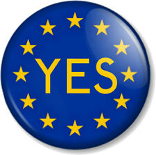"EU YES Vote In European Union Referendum 25mm 1"" Pin Button Badge Flag GB UK"
