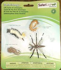 Plástico De Insectos Mosquitos ciclo de vida de 4 etapas educativas de recursos de aprendizaje -