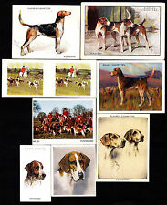 21 Different Vintage Foxhound Tobacco/Candy Dog Cards
