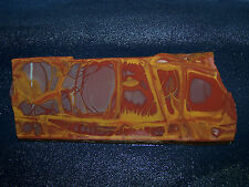 "Noreena Jasper slab-6 3/8 "" x  2 3/4 ""  rough  for cabbing-display"