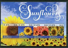 St Kitts 2015 MNH Sunflowers 4v M/S II Sun Flowers Nature Flora