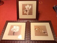 Set of 3 Sephia Flower Photographs Pictures art Jan Gordon Framed Matted Pretty!