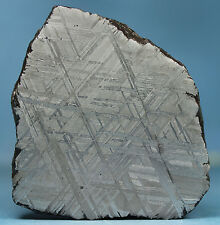 Meteorites - Muonionalusta 119.8g Polished and Etched Complete Slice