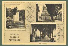 Piemonte. POZZOLO FORMIGARO, Alessandria. Saluti da. Cartolina viaggiata 1962.