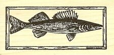 Walleye In Frame, Wood Mounted Rubber Stamp NORTHWOODS - NEW, D9739