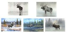 5-8x10 signed Moose prints by George Wise