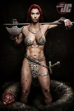 "Art Design Girl-Red Sonja Fabric poster 36"" x 24"" Decor 37"