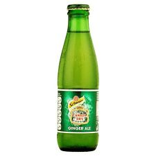 SCHWEPPES CANADA DRY GINGER ALE Drinks mixer 24 x 200ml