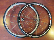 BONTRAGER RACE X LITE CAMPAGNOLO FREE HUB SHOP SPECIAL WHEEL SET GRAND PRIX 4000