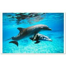 "Robert Wyland     ""Dolphin Duet""    MAKE  OFFER DSS"