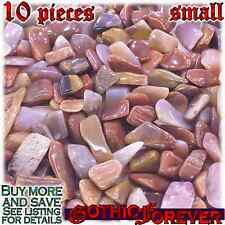 10 Small 10mm Combo Ship Tumbled Gem Stone Crystal Natural - Petrified Wood