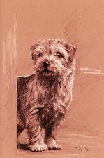 """NORFOLK TERRIER DOG ART LIMITED EDITION PRINT - """"Just Around the Corner"""""""
