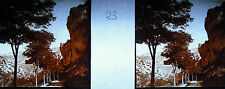 Plaque photo stéréoscopique photographie Gorges du Tarn vers 1930,