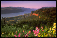 380020 Crown Point Columbia River Gorge Oregon A4 Photo Print