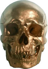Human Skull Replica, GOLD Metallic Color, Life Size: Ships From USA