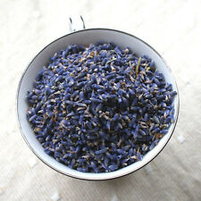 Culinary Lavender Grown In Yorkshire