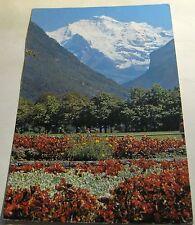 Switzerland  Interlaken Jungfrau 8308 Steinhauer - posted