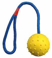 Durable Natural Rubber Ball on Rope Throw & Fetch Dog Toy 7cm/30cm