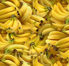 Fat Quarter Bananas Food 100% Cotton Quilting Fabric  50 x 55cm And Larger
