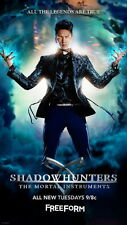 "DY00764 Shadowhunters 2016 - Katherine McNamara Fantasy Movie 14""x25"" Poster"