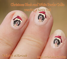 BORDER COLLIE B/W Christmas Santa Hat  Set of  24 Nail Art Stickers Decals