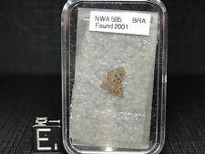 NWA595 Official Achondrite Brachinite Meteorite - 0595-0001 - THIN SECTION-RARE