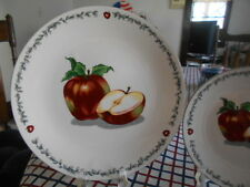"Apple Seed Seeds Dinner Plate (s) 10"" Totally Today Stoneware Red Green White !"