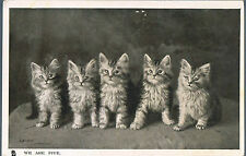 TUCK CARD HAPPY CATLAND SER II WE ARE FIVE PERSIAN KITTENS 1906 PALMERS GREEN