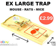 Why Buy Mouse Mice Rat Glue Traps. When You Can Buy The Classic  EX LARGE Trap