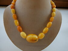 CATENA succinico-Butterscotch-Amber catena-necklace 老琥珀