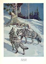 """1957 Vintage FRANCIS LEE JAQUES """"TIMBER WOLF"""" AWESOME Color HUNTING Lithograph"""