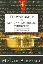 Stewardship in African-American Churches: A New Paradigm by Melvin Amerson