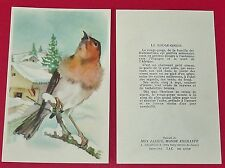 1955-1960 CHROMO GRANDE IMAGE ECOLE BON-POINT OISEAUX ROUGE-GORGE BIRDS