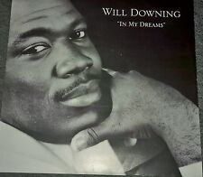 "Will Downing(12"" Vinyl P/S)In My Dreams-12BRW104-VG/VG"